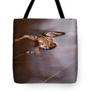 European Common Brown Frog Tote Bag