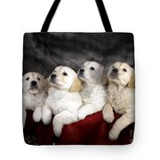 Festive Puppies Tote Bag
