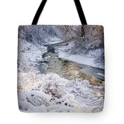Forest Creek After Winter Storm Tote Bag