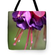 Fuchsia Named Dark Eyes Tote Bag