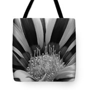 Gazania Named Big Kiss White Flame Tote Bag