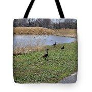3 Geese Tote Bag