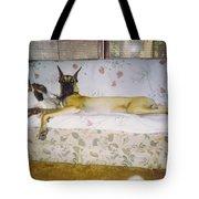 Great Dane And Calico Cat Tote Bag