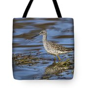 Greater Yellowlegs Tote Bag