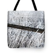 Hoar Frost On The Fence Tote Bag