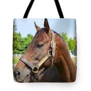 Horse On A Farm  Tote Bag