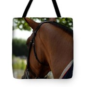 Hunter2 Tote Bag