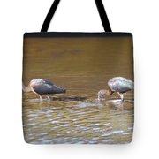 Ibis Tote Bag