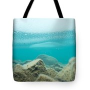 Ice Floats In Shallow Lake With Rock Reflections Tote Bag