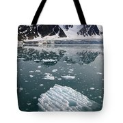 Icebergs Near The Monaco Glacier Tote Bag