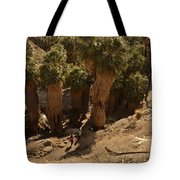 Indian Canyon Tote Bag
