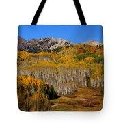 Kebler Color Show Tote Bag