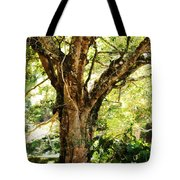 Kingdom Of The Trees. Peradeniya Botanical Garden. Sri Lanka Tote Bag
