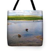3-lay Of Land Grizzly Bears In Moraine River In Katmai National Preserve-ak Tote Bag