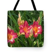 Three Lilies In A Row Tote Bag