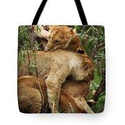 Lion Cubs On The Masai Mara  Tote Bag