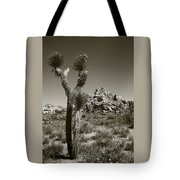 Joshua Tree National Park Landscape No 3 In Sepia Tote Bag