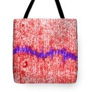 Mitotic Spindle Tem Tote Bag