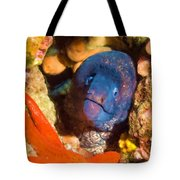 Moray Eel With Starfish Tote Bag