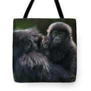 Mountain Gorilla And Infant  Tote Bag