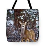 Mule Deer In Snow Tote Bag