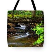 Natural Bridge Tote Bag