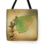 Nature And Places Of Spain Tote Bag