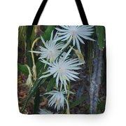 Night Blooming Cactus Tote Bag