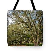 Oak Alley Backyard Tote Bag