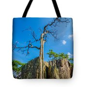 Old And Ancient Dry Tree On Top Of Mountain Tote Bag