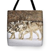 3 Pack Tote Bag