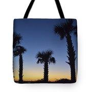 Carolina Palm Sky Tote Bag