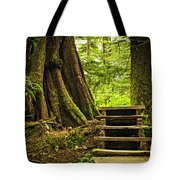 Path In Temperate Rainforest Tote Bag by Elena Elisseeva