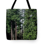 Picnic With The Giants Tote Bag