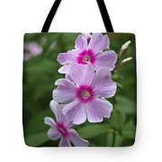 Pink Wood-sorrel  Tote Bag