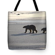 Polar Bear Mother And Cub Tote Bag