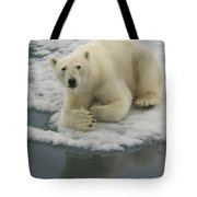 Polar Bear Resting On Ice Tote Bag
