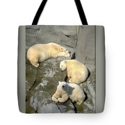 3 Polars Tote Bag