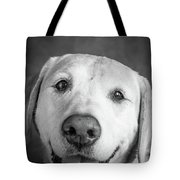Portrait Of A Boxer Dog And Golden Tote Bag