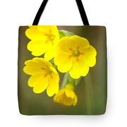 Primula Cowslip Fairy Cups Tote Bag