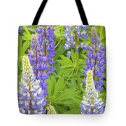 Purple Lupine Flowers Tote Bag