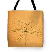 Pyramidal Cell In Cerebral Cortex, Cajal Tote Bag