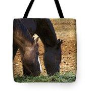 Rancho Oso - California Tote Bag