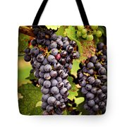 Red Grapes Tote Bag by Elena Elisseeva
