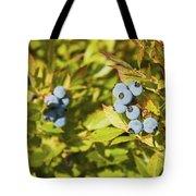 Ripe Maine Low Bush Wild Blueberries Tote Bag