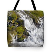 River San Juan  Tote Bag