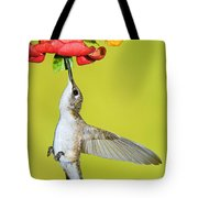Ruby-throated Hummingbird Female Tote Bag