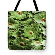 Russian Silverberry Leaf Sem Tote Bag