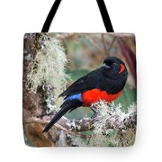 Scarlet-bellied Mountain-tanager Tote Bag