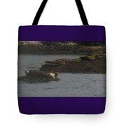Seals Series 2  Tote Bag